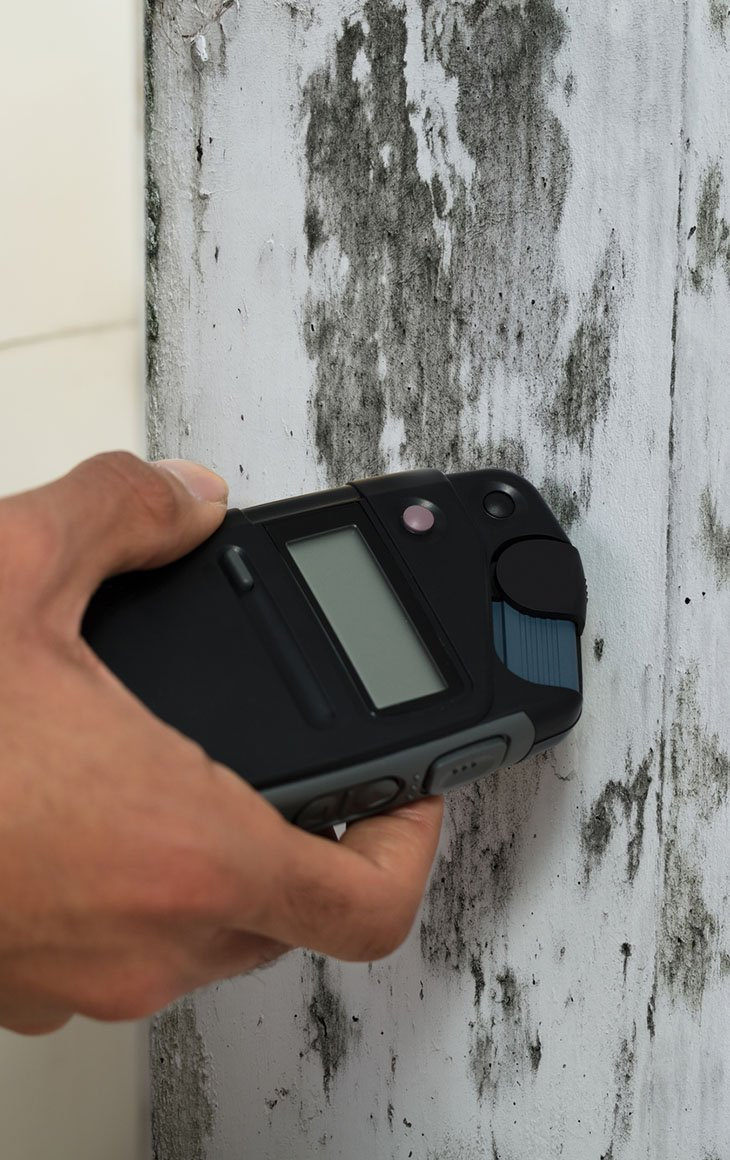 Mold assessment is the first step in remediation