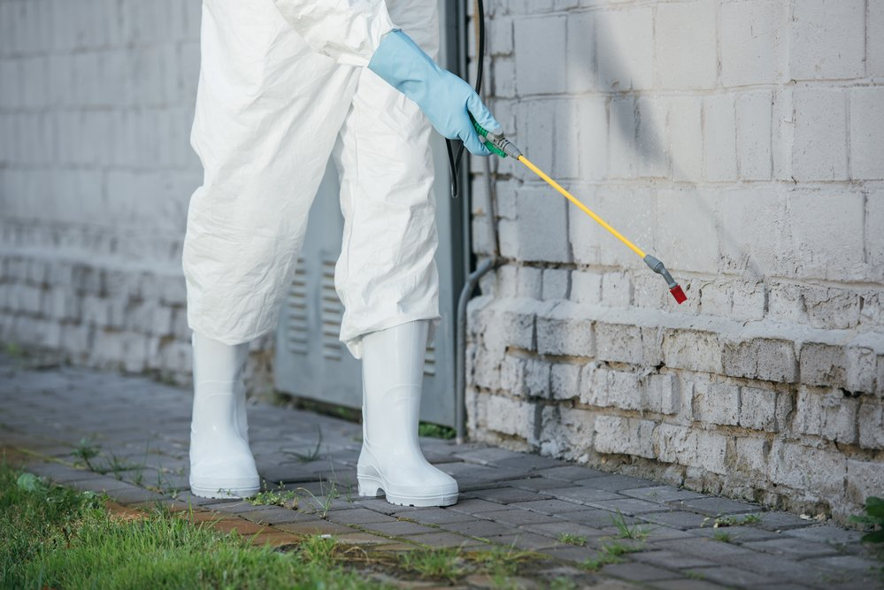 How to Prepare Your Home for Pest Control