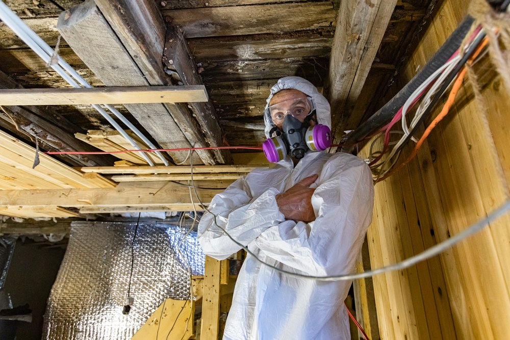 Mold inspector in home